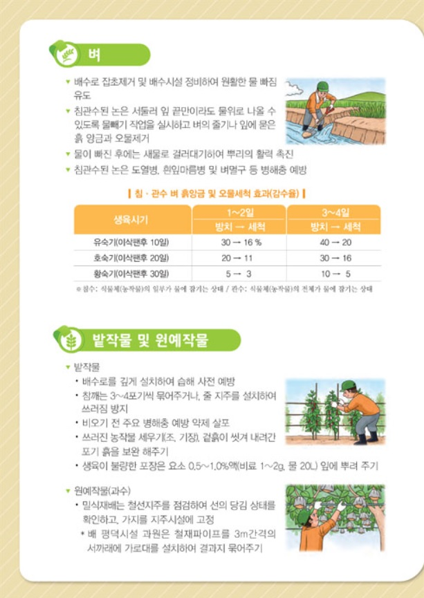 여름철 농작물 관리2.jpg